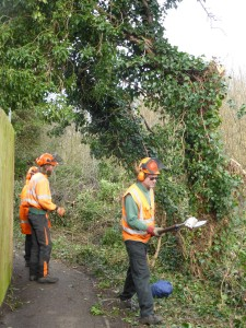Chicheley St Leary Cres path clearance
